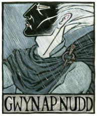 gwynapnudd