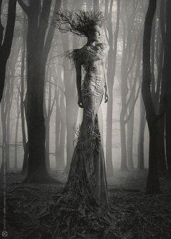 Foto de uma mulher entre a floresta