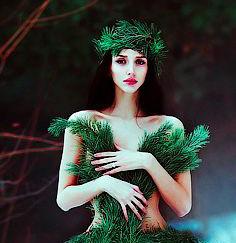 Fotografia de mulher envolta de ramos de pinheiro